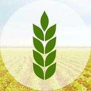 Аграрный журнал АгроПромИнформ группа в Моем Мире.