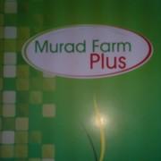 Murad farm  plus on My World.
